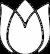 White Rose Logo